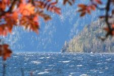 Телецкое озеро. Фото: Евгений Веселовский