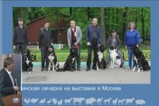 11.04.18. Ю. Столповский. Сохранение генофонда домашних животных