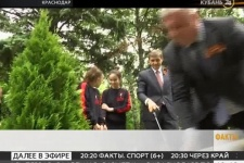 """В Краснодаре у дворца спорта """"Олимп"""" посадили несколько десятков туй"""