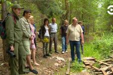 Экологический пресс-тур по золотаревской кедровой аллее