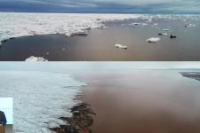 14.12.20. М. Гаврило и др. Открытый океан: архипелаги Арктики – 2019. Северная Земля. Часть 1