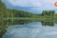 """Выставка """"Водный мир Костромского края"""""""