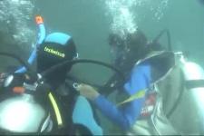Папунов школа подводного плавания