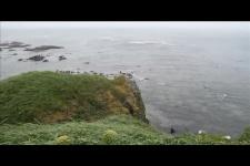 Острова в океане _ 1