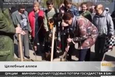 Аллеи Русского географического общества появились в Хадыженске