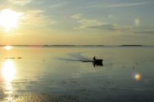 Горьковское водохранилище. Фото предоставлено Костромским областным отделением РГО