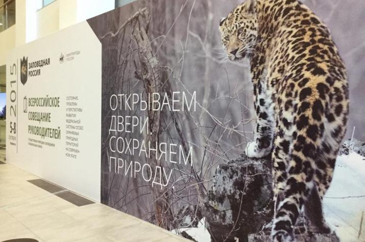 Фото: leopard-land.ru