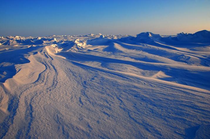 Арктика. Фото: Ярослав Никитин