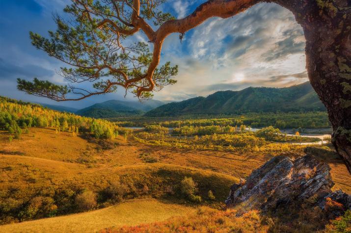 Основная цель Дня эколога - защита природных комплексов от антропогенного воздействия. Фото: Антон Агарков