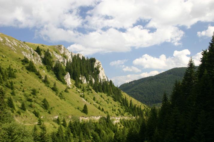 Горный массив Копаоник. Фото: Ирина Милькович