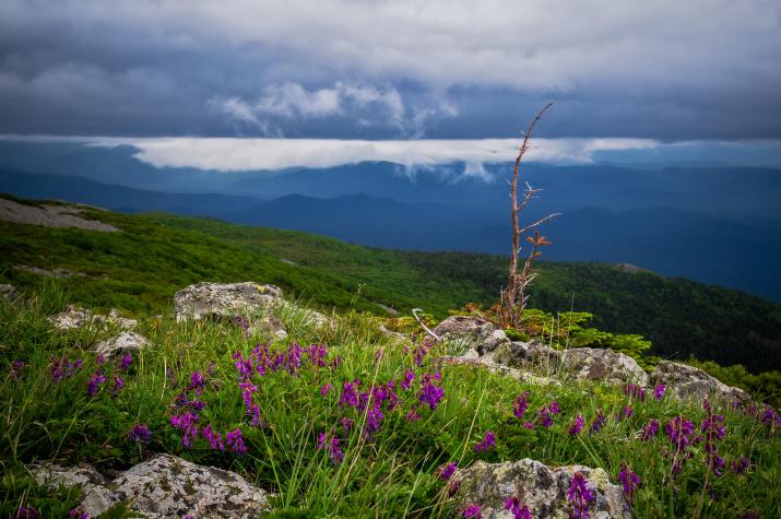 Фото: Виталий Берков, участник первого фотоконкурса «Самая красивая страна»