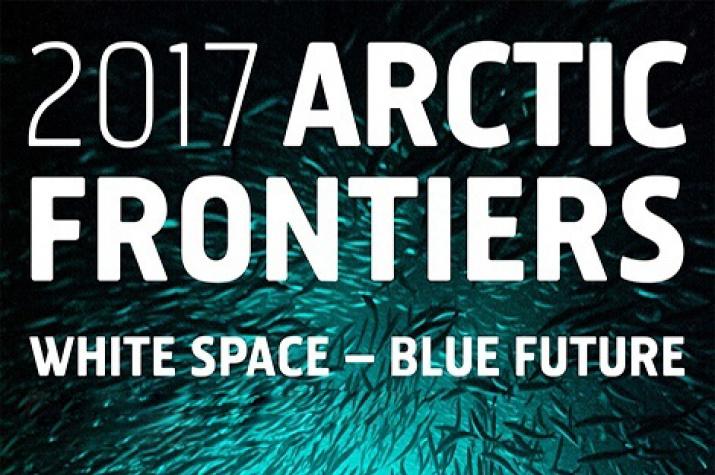 «Арктические рубежи» пройдут вНорвегии