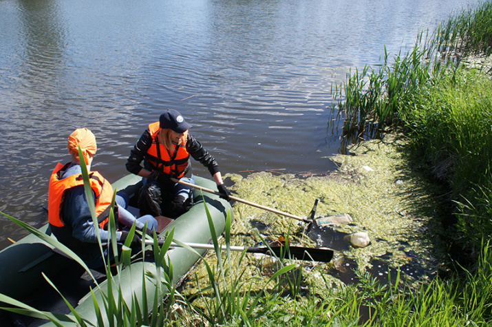 Уборка озера Лебединое