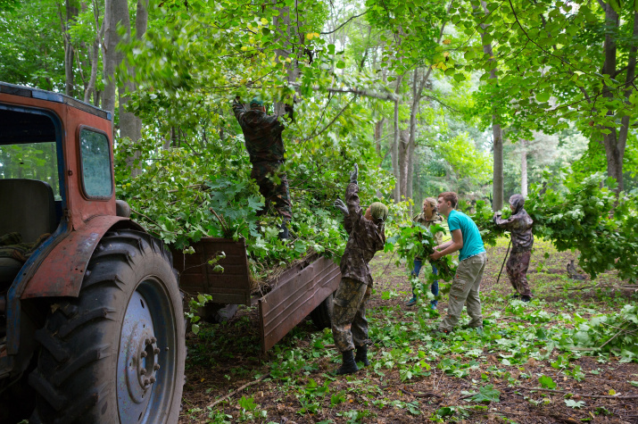 Вывоз трактором вырубленного в парке подроста (Фото С.Белых).