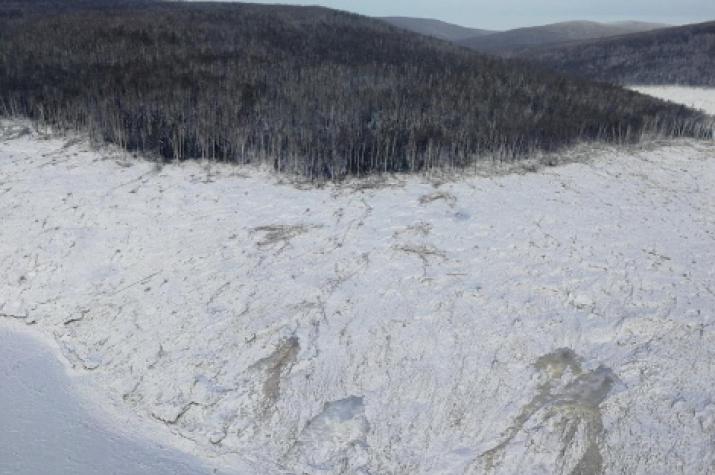 Right bank of the Bureya River. Photo: A.N.Mahinova
