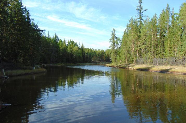 Грязе-рапное озеро Мохсоголлох-основа современной лечебной индустрии Кемпендяя