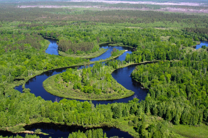 Фото: Река Пра. Юрий Маркин, сайт Окского заповедника