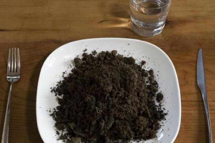 Как и с чем едят почвы?