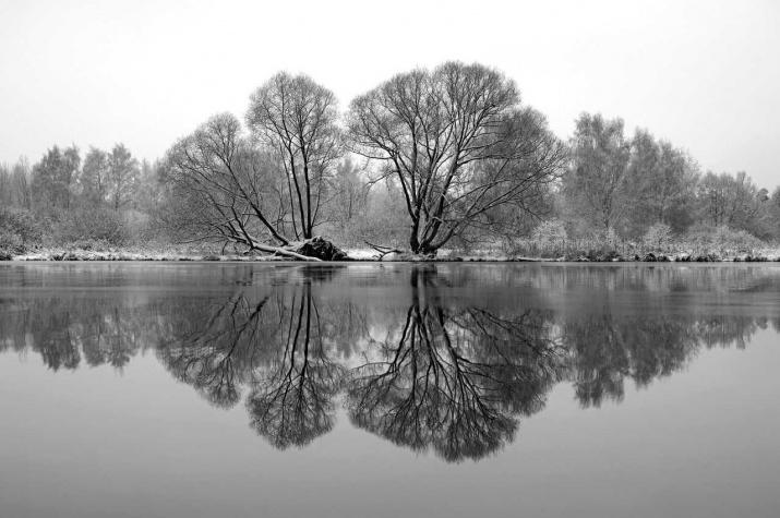 Первый снег на реке. Фото: Илья Домиров