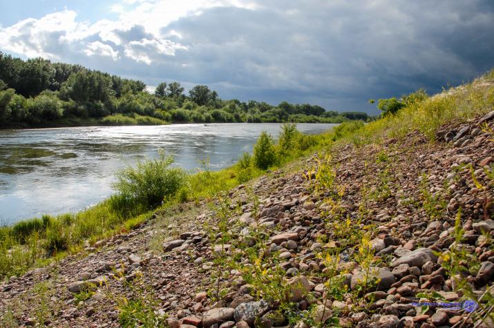 Река Урал у с. Пехотного (фото А.А. Чибилёва)