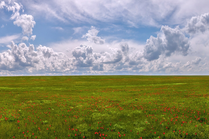 """Фото: Фёдор Лашков, участник конкурса """"Самая красивая страна"""""""