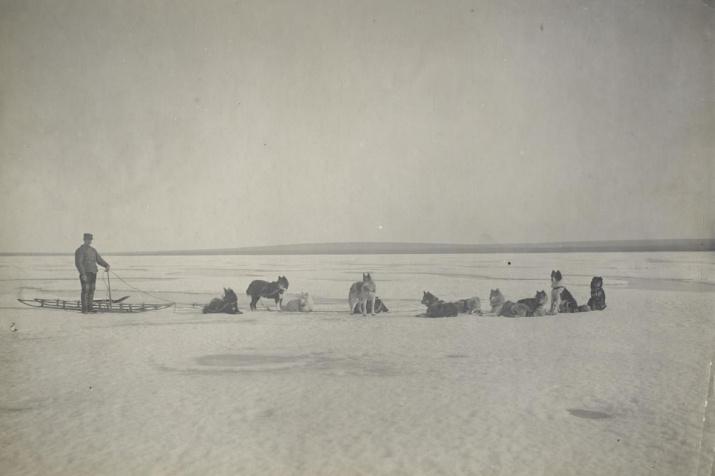 Экспедиция Э.В. Толля. Изображение из Архива РГО
