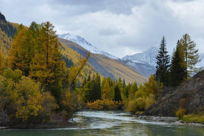 Река Чуя. Фото: А. Тырышкин