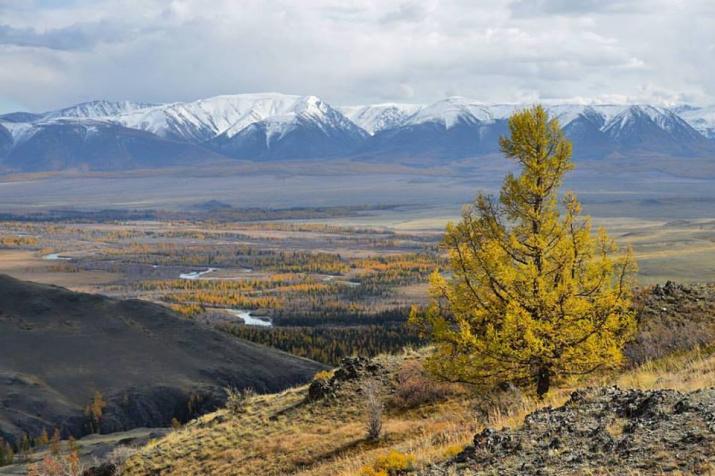 Северо-Чуйский хребет. Фото: А. Тырышкин