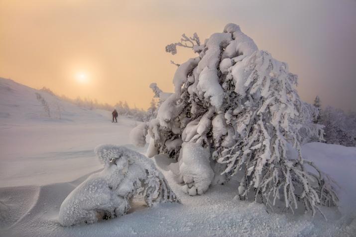 Фото: Дмитрий Архипов