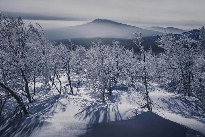 Photo by Dmitriy Kupratsevich