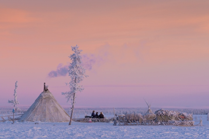 Alone in the Tundra. Photo by: Ekaterina Vasyagina, a finalist of the Most Beautiful Country Photo Contest