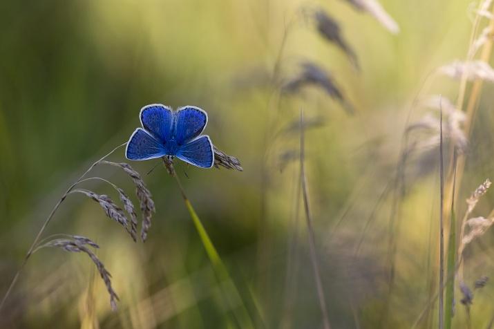 Фото: Татьяна Максимова