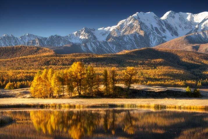 Фото: Владимир Ляпин