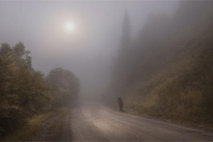 Фото: Павел Сухоребриков