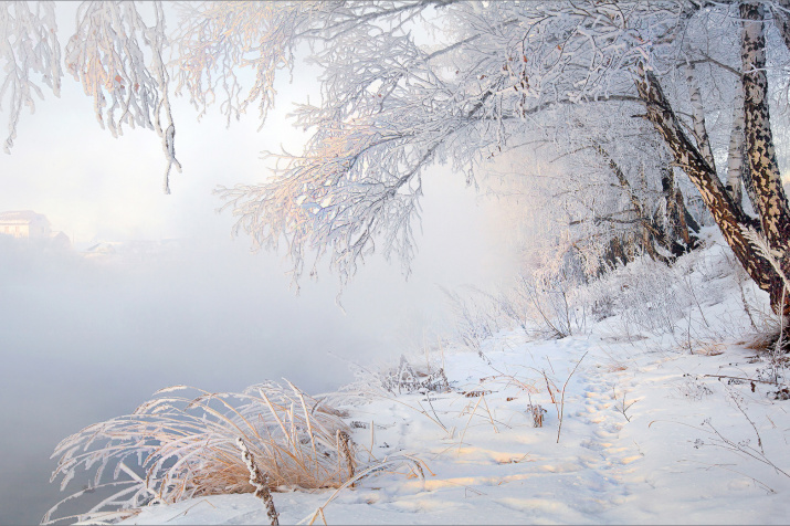 Фото: Наталья Беленцова