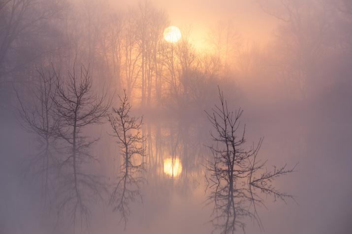 Фото: Татьяна Белякова