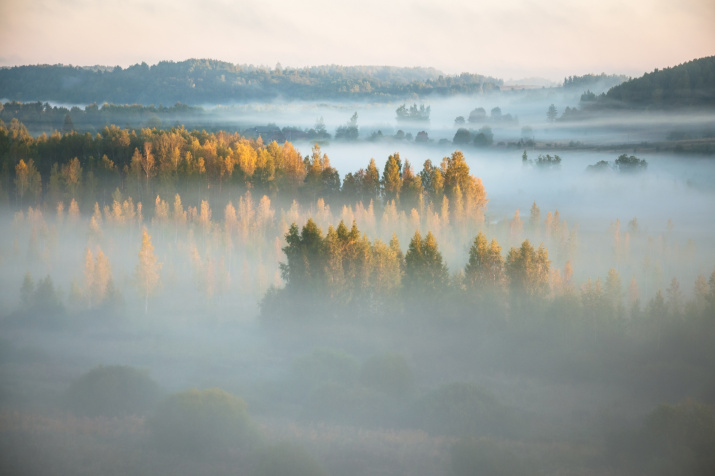 Фото: Роман Дмитриев