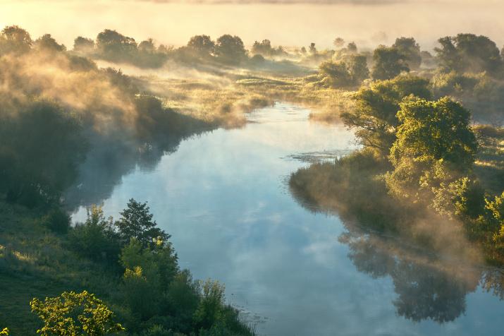 Фото: Андрей Соколов