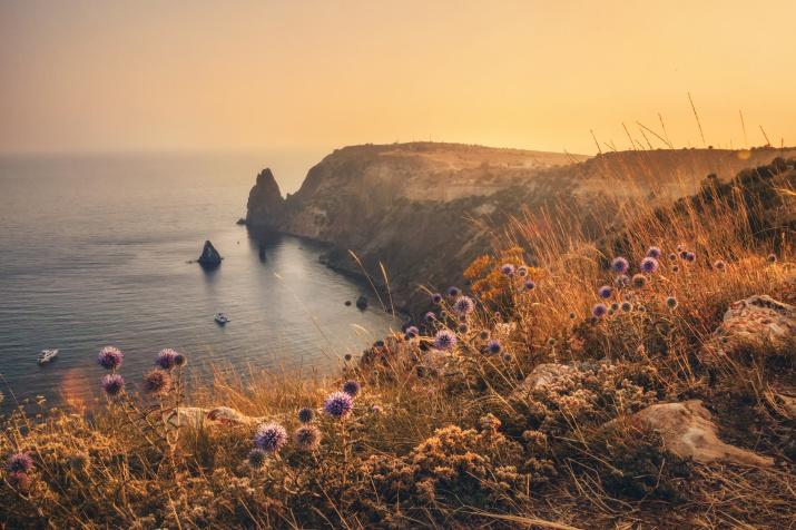 Утомленные солнцем. Фото: Евгения Ботова