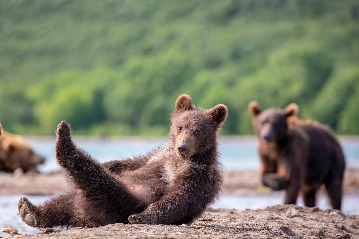 Утренняя гимнастика. Фото: Константин Шатенев