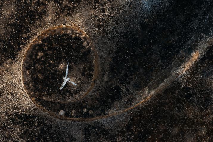 Один во вселенной. Фото: Татьяна Нерикова