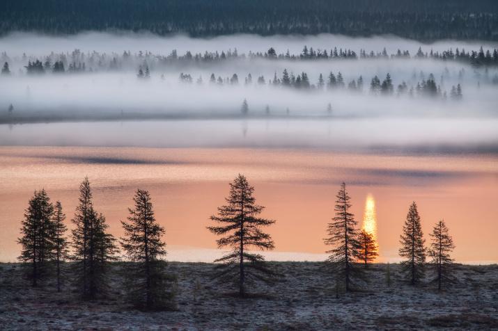 Начало нового дня. Фото: Сергей Карпухин