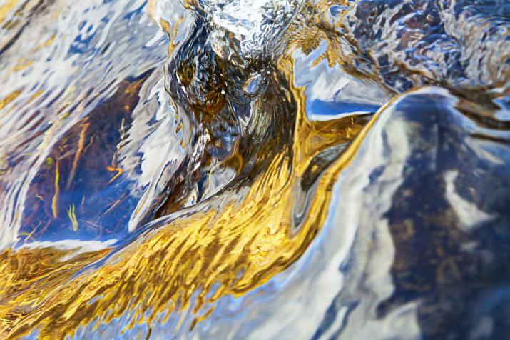 Живая вода. Фото: Сергей Чарушин