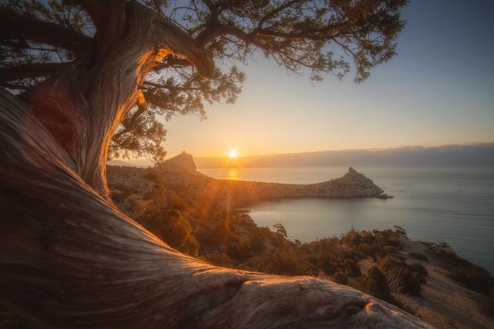 Золотой свет рассвета. Фото: Роман Любимский