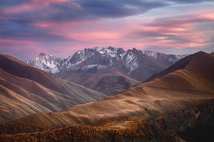 Нежный розовый. Фото: Алексей Агеев