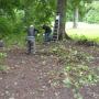 Расчистка усадебного парка. Фото: О.Пожидаева
