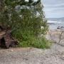 Зенитное орудие на берегу острова Большой Тютерс