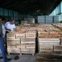 В помещении районного фруктохранилища. Фото предоставлено Дагестанским республиканским отделением РГО