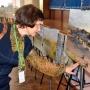 Участники XIII Международной ландшафтной конференции знакомятся с работами А.А. Чибилева
