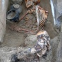 Partially mummified burial on the Terezin ground. Photo by: expedition members